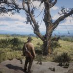 Red_Dead_Redemption_2-10